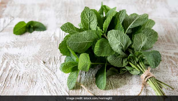 Kitchen Tips: How To Store Pudina (Mint) Leaves For Up To One Year, Watch Video | How do You Keep Mint Leaves Fresh In The Refrigerator | Can Mint Leaves Be Frozen For Future Use?