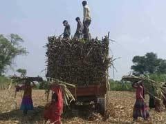 देश की ग्रामीण अर्थव्यवस्था चरमराई, नई सरकार के सामने खड़ी होगी दिक्कत