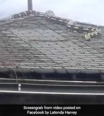 'It's Moving, It's Huge': Watch 18-Foot Snake Slither On Detroit Roof