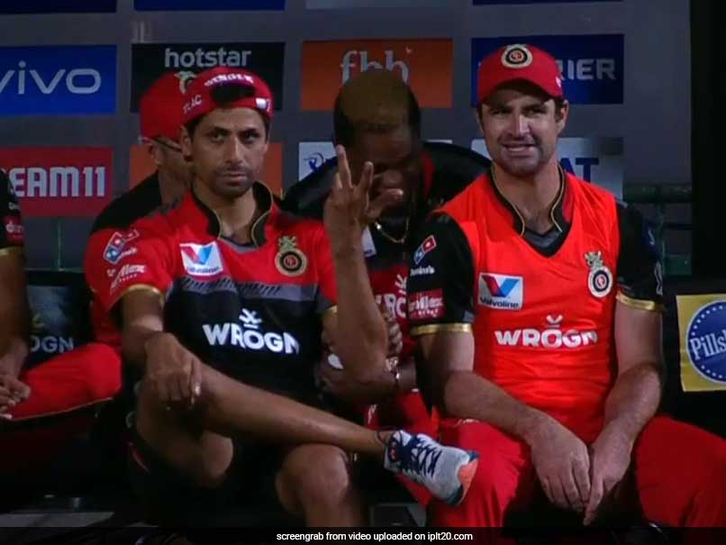 Rcb Vs Csk Ashish Nehra S Reaction To Dale Steyn S Ferocious Yorker Is Not To Be Missed Watch Cricket News