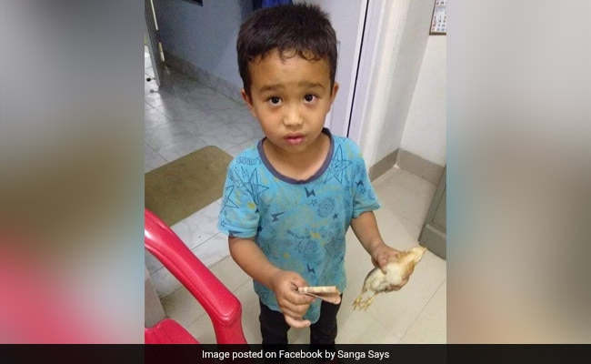 Mizoram Boy Runs Over Chicken, Rushes It To Hospital With His 'Savings'