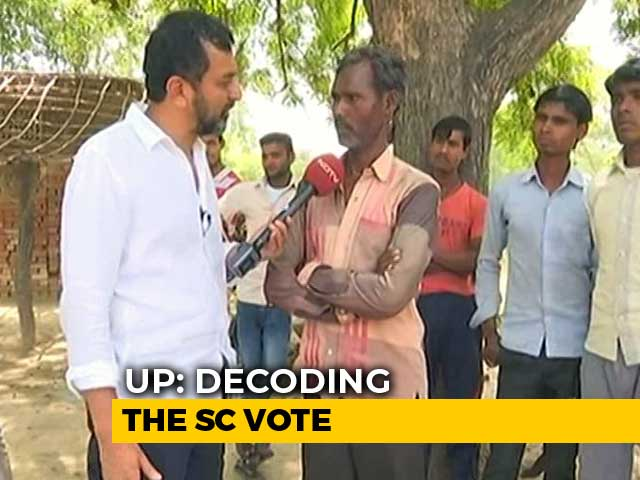Video : In UP, BJP's Dalit Outreach May Have Run Into A New Wall: Stray Cattle