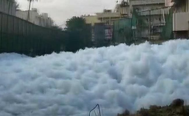 Bengaluru's Bellandur Lake Begins To Froth Once Again
