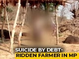 Video : Unable To Repay Rs. 9,000 Loan, Madhya Pradesh Farmer Commits Suicide