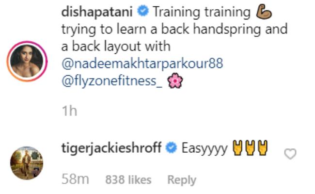 Easy': Tiger Shroff's Reaction To Disha Patani's New Parkour