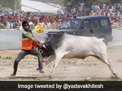 "Bull Was Hunting ""Friends Of Butchers"" At Grand Alliance Rally: Yogi Adityanath"