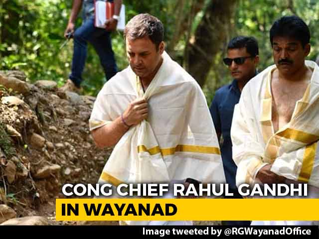 Rahul Gandhi Visits Stream In Wayanad Where Father's Ashes Were Immersed