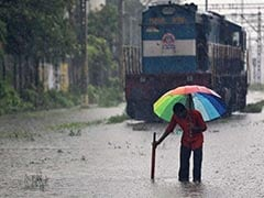 Monsoon Likely To Be Near Normal This Year, Says Met Department