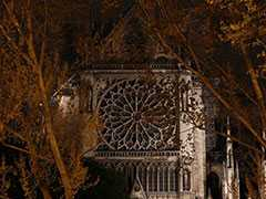 Notre-Dame Was In Ruins. Victor Hugo's Novel About A Hunchback Saved It