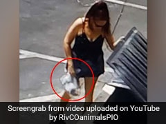 On Camera: Woman Dumps Bag Of Puppies Next To Dumpster, Arrested