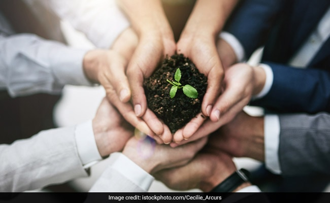 Earth Day 2019: 8 Ways To Go Cleaner And Greener