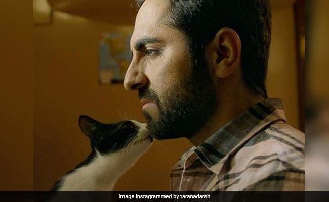 AndhaDhun China Box Office Collection: Ayushmann Khurrana And Tabu's Film At Rs 136 Crore And Counting