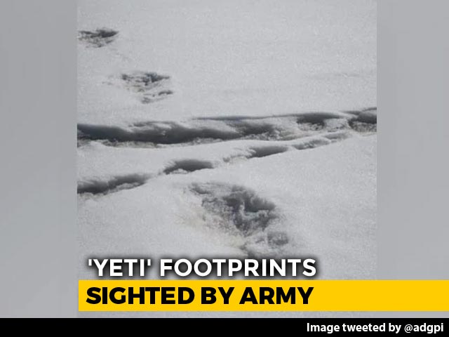 Video : 'Yeti' Footprints Sighted By Expedition Team, Tweets Indian Army