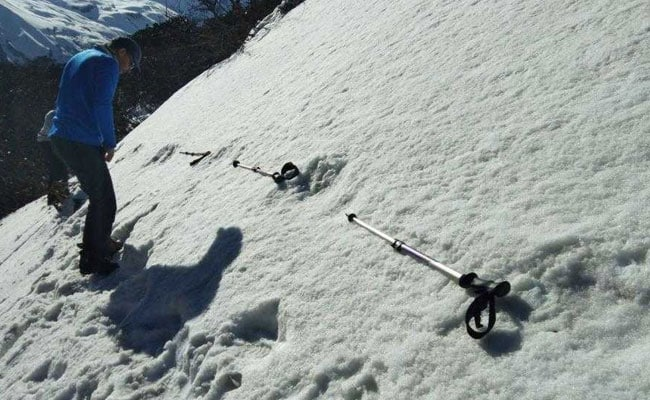 Nepal Army Refutes Claims Of Yeti Footprints, Says Could Be Wild Bear