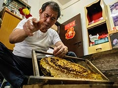 The Hong Kong Beekeeper Harvesting Hives Barehanded
