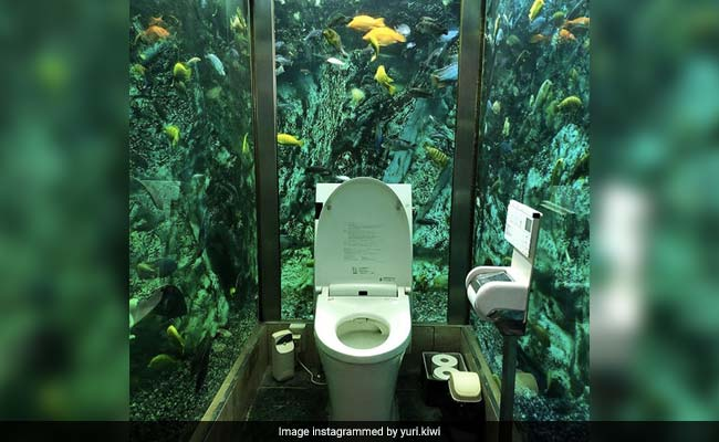 Toilet Surrounded By Beautiful Aquarium Takes Social Media By Storm