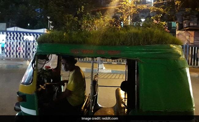 Kolkata Auto Driver Plants Garden On Vehicle To Spread Important Message
