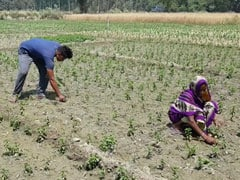 Centre Asks Odisha To Send List Of Farmers Under PM-Kisan Scheme