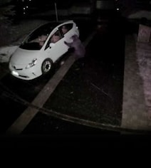 Watch: Scary Surveillance Footage Shows Bear Opening Car Door