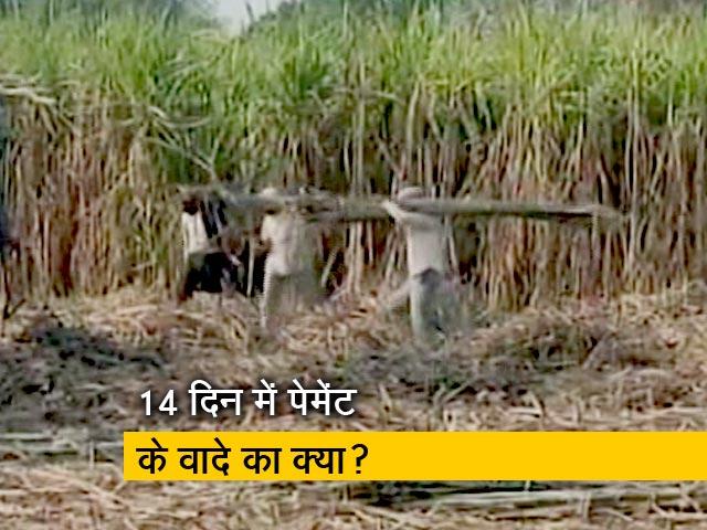 Video : क्या यूपी में गन्ना किसानों का बकाया भी चुनावी मुद्दा है?