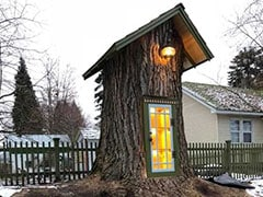 Viral: Woman Turns Tree Stump Into A Little Free Library Fit For Magical Elves