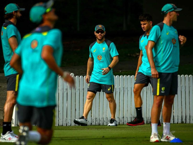 Smith and Warner make returns against NZ