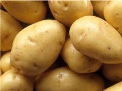 Benefits Of Potatoes: आलू के फायदे जानकर हैरान हो जाएंगे, ब्लड प्रेशर से लेकर दिल के रोगों और कैंसर तक से करता है बचाव!