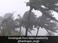 Cyclone Fani का शॉकिंग Video हुआ वायरल, हरभजन सिंह ने कहा- 'सभी के लिए प्रार्थना कर रहा हूं...'