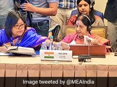 Sushma Swaraj, Pak Counterpart Exchange Pleasantries On SCO Meet Sidelines