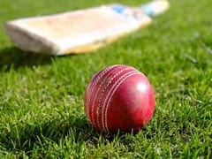 Neither Court Nor CoA But Elected Bodies Should Run Cricket: Amicus Curiae PS Narsimha