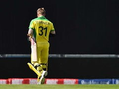 """Get Off, You Cheat"": David Warner Booed, Heckled By Crowd In England"