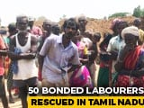 Video : 50 Rescued From Bonded Labour At Three Brick Kilns In Tamil Nadu