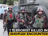 Video : Terrorist Killed In Encounter In Jammu And Kashmir's Shopian