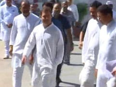 Rahul Gandhi's Resignation Rejected By Top Congress Body: Sources