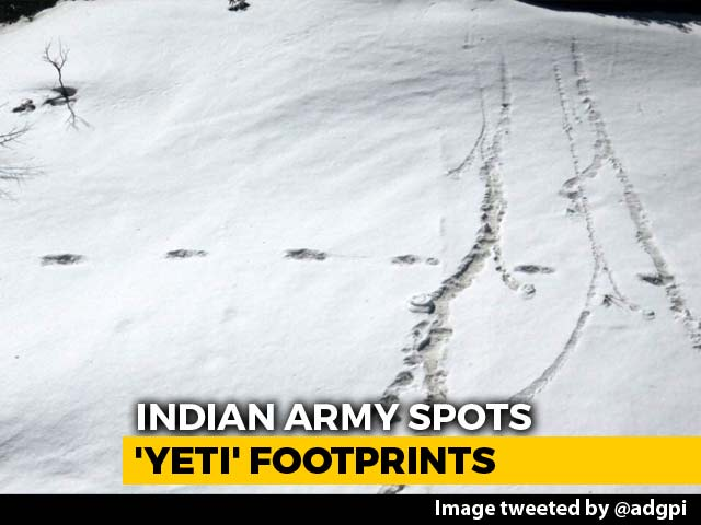 "Video : What Scientists Are Saying About Army's ""Yeti"" Footprint Photos"