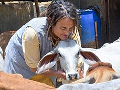 German Padma Shri Awardee Who Looks After Cows Allowed To Stay In India