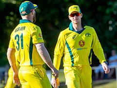 Steve Smith, David Warner Are Big Boys, Will Be Fine On Comeback, Says Ricky Ponting