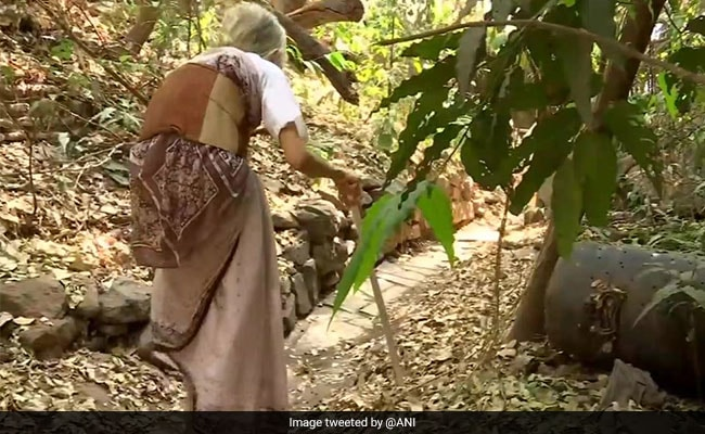 Retired Pune Professor, 79, Has Lived Her Whole Life Without Electricity