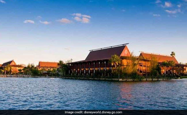 Woman Suffers Injuries After Bird 'Dive-Bombed' Her, Sues Disney World