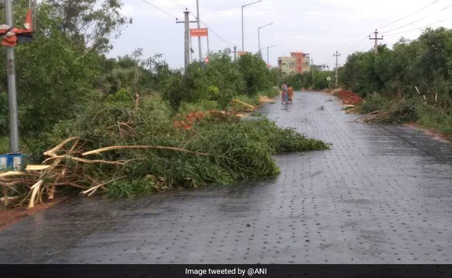 Cyclone Fani Live Updates: Number Of Dead Rises To 16 In Odisha