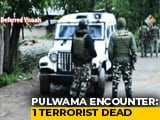 Video : Terrorist Shot Dead In Encounter With Security Forces In J&K's Pulwama