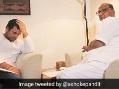 शरद पवार से मिले राहुल गांधी तो बॉलीवुड प्रोड्यूसर ने कसा तंज, बोले- सर दर्द बढ़ रहा है...