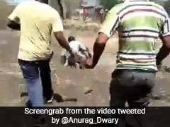 तेंदुए की वीडियो रिकॉर्डिंग कर रहा था शख्स, तेज रफ्तार में दौड़ते हुए ऐसे किया हमला... देखें VIDEO