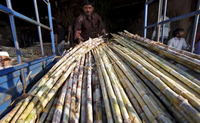 India's Sugar Output Seen Hitting Record Levels, Putting Pressure On Prices
