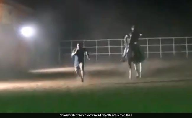 सलमान खान ने रेस में घोड़े को भी दिया हरा, वायरल हुआ भाईजान का जबरदस्त वीडियो