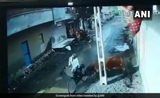 गुजरात में पागल सांड का आतंक, जो निकला सड़क से उसे उड़ाया... देखें VIDEO