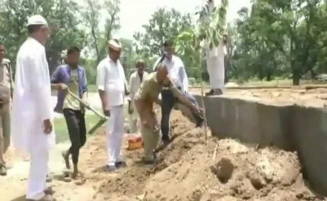 Instead Of Paying For Bail, UP Officer Asks Culprits To Plant 5 Saplings