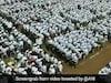 ஒரே நாளில் 20 ஆயிரம் மரக்கன்றுகளை நட்டு கின்னஸ் சாதனை முயற்சி! அசத்திய மாணவர்கள்!!