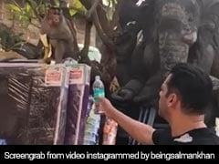 सलमान खान ने 'बजरंगी भाईजान' को दिया पानी लेकिन उसने लेने से किया इनकार, देखें Video