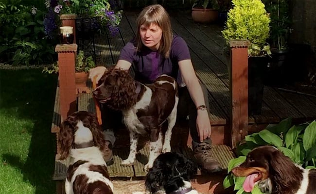 'People May Think I'm Barking Mad,' Says Woman Who Set Up Airbnb For Dogs